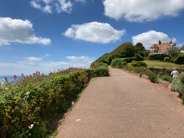 Flat Budleigh View